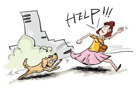 如何避免宠物狗伤人事件的发生?
